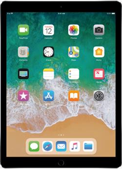 iPad Pro 12.9<br> (2-го поколения)